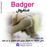 زبان رمزی Badger