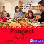 زبان رمزی Pungent