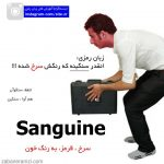 زبان رمزی Sanguine