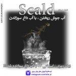 زبان رمزی Scald