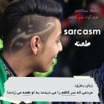 زبان رمزی sarcasm